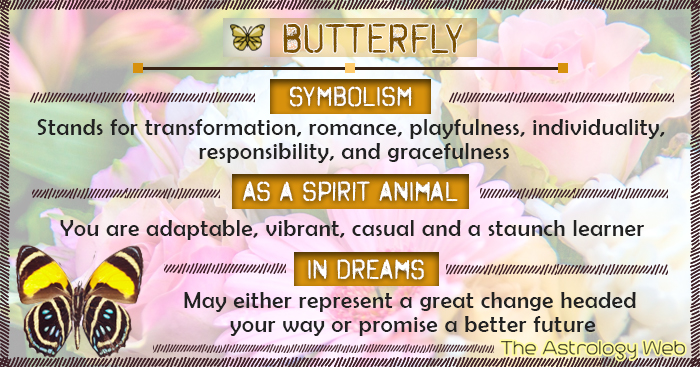 Butterfly Meaning And Symbolism The Astrology Web