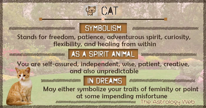 Cat Meaning And Symbolism The Astrology Web The Astrology Web