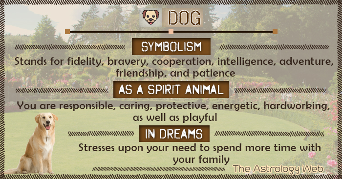 Dog Symbolism Spirit Animal Dream