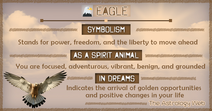 Eagle Meaning And Symbolism The Astrology Web The Astrology Web