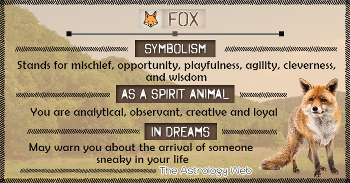 Fox Meaning And Symbolism The Astrology Web