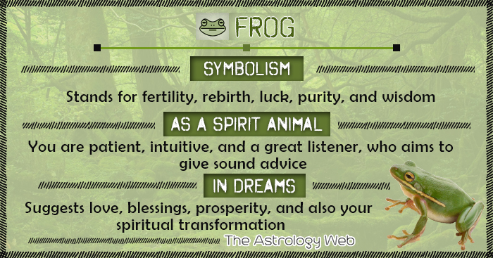 Frog Symbolism Spirit Animal Dream