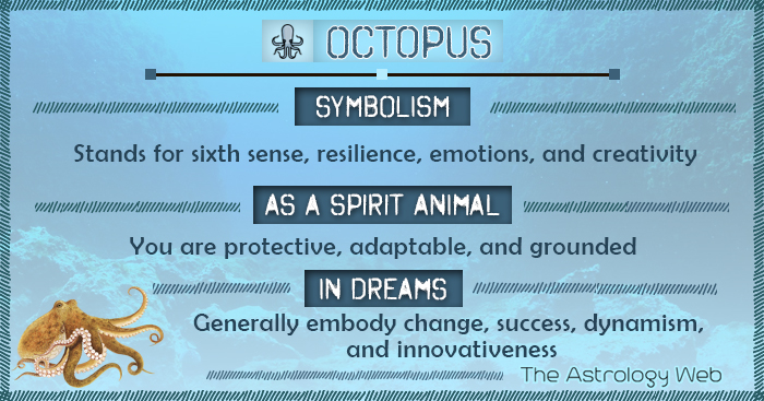 Octopus Symbolism Spirit Animal Dream