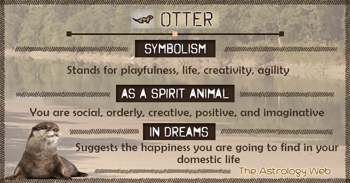 Otter Symbolism Spirit Animal Dream