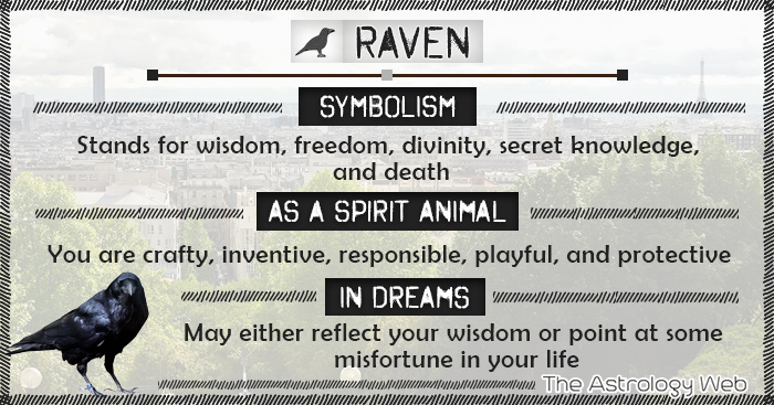 Raven Symbolism Spirit Animal Dream