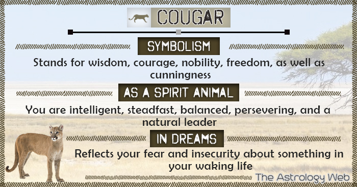 what does cougar stand for
