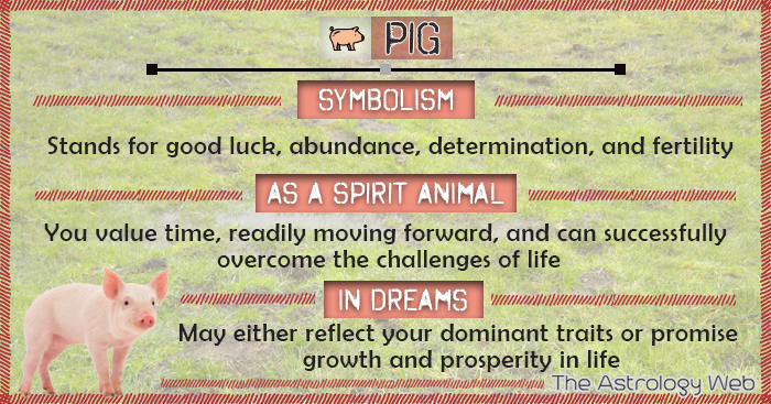 Pig Meaning And Symbolism The Astrology Web