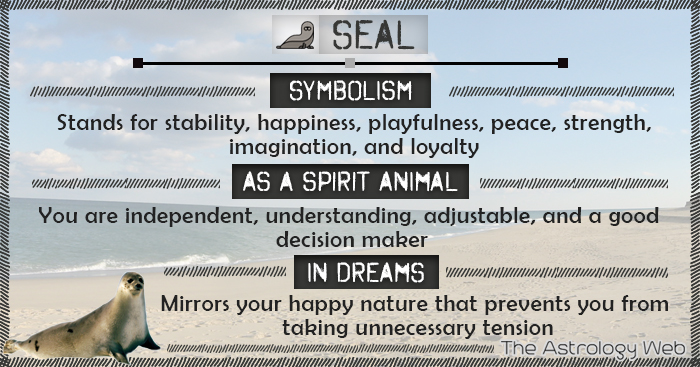 Seal Symbolism Spirit Animal Dream