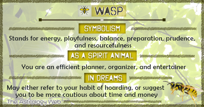 Wasp Meaning And Symbolism The Astrology Web