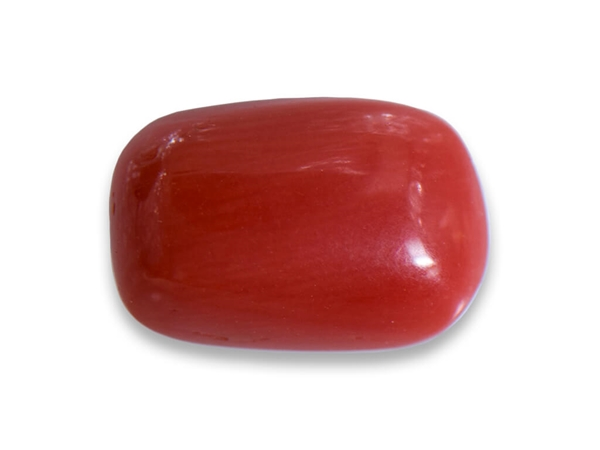 Pisces Coral Birthstone