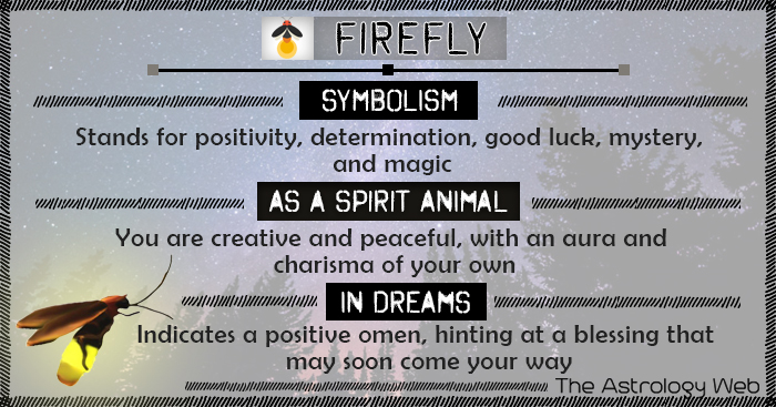 Firefly Symbolism Spirit Animal Dream