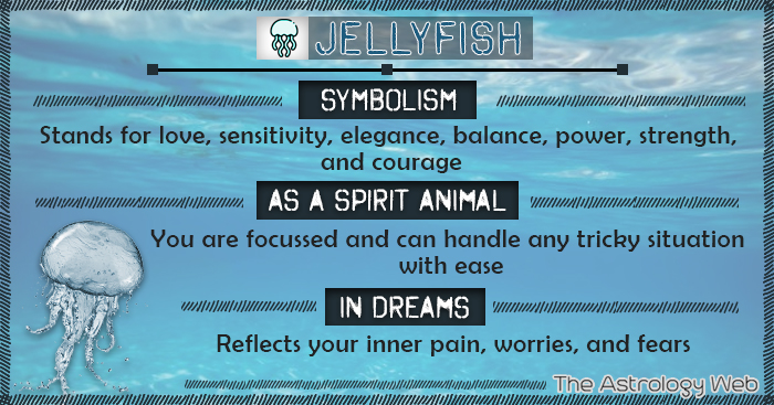 Jellyfish Symbolism Spirit Animal Dream